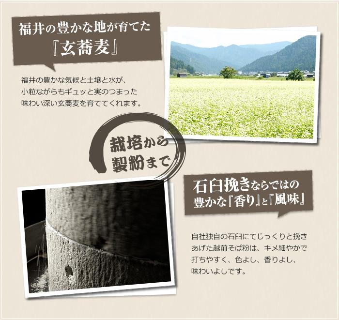 福井の豊かな地が育てた『玄蕎麦』