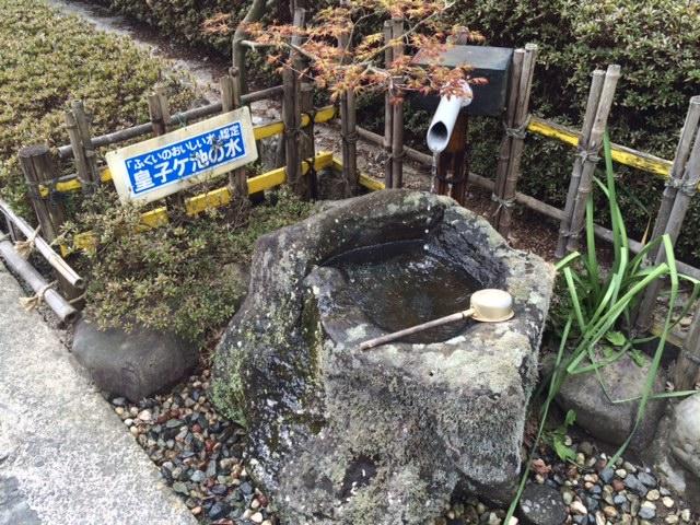 湧き出ているふくいのおいしい水「皇子ケ池の水」