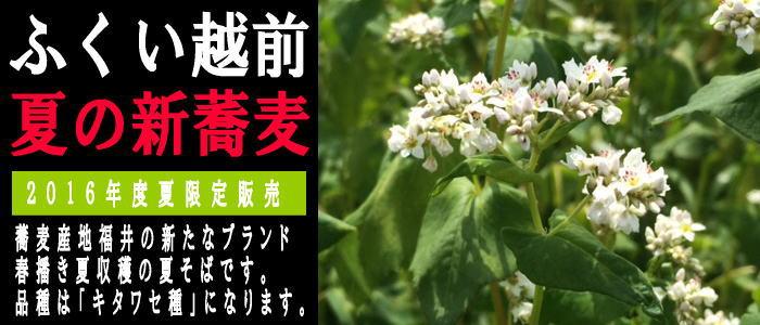 福井越前夏の新蕎麦