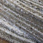 粗挽きそば粉(玄挽き)で打った蕎麦の断面