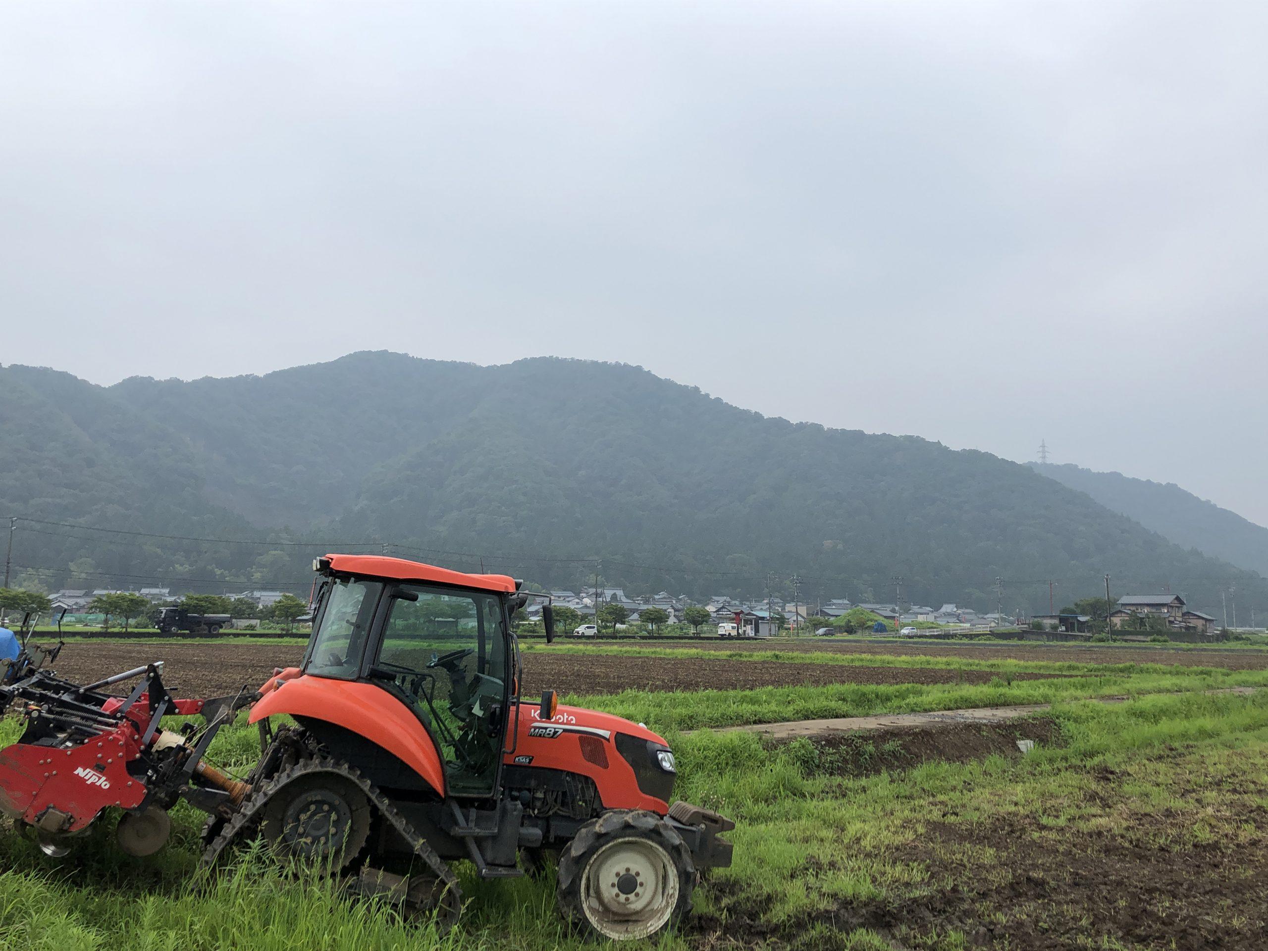令和2年福井県産秋ソバの播種(種まき)休止状況