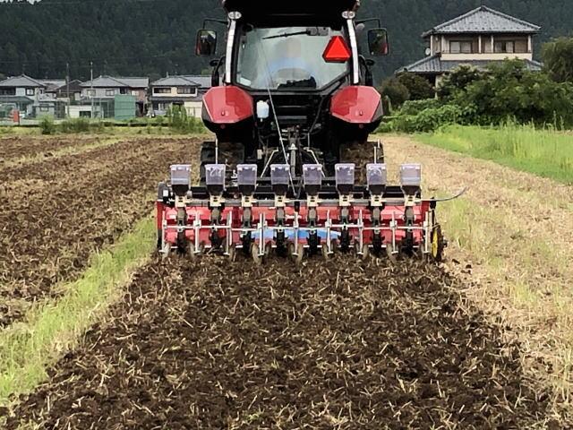 令和2年福井県産秋ソバの播種(種まき)状況
