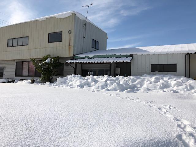 令和3年福井県の大雪で降り積もった状況(製粉所前)