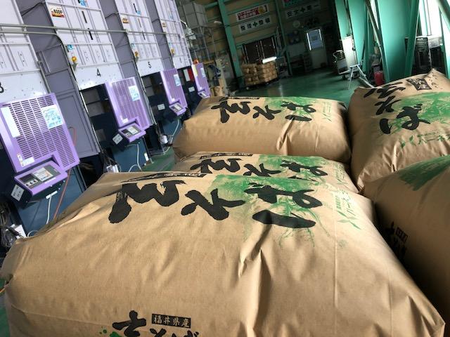 乾燥袋詰めされた福井県産夏そばの玄ソバ
